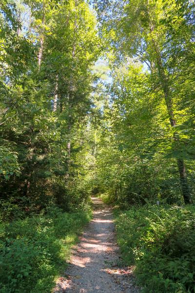 Black Mountain Trail -- 2,170'