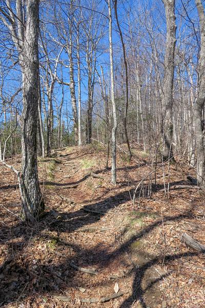 Black Mountain Trail -- 4,050'