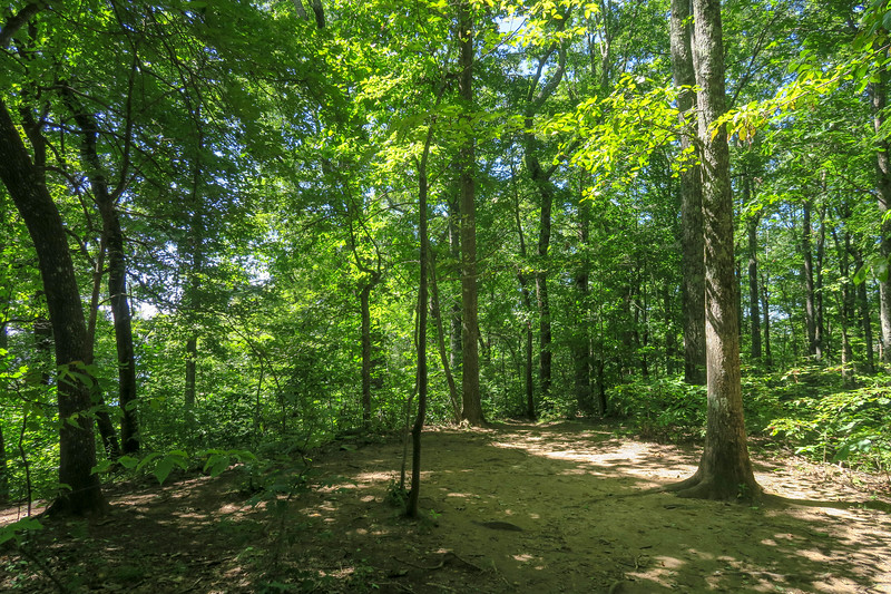 Black Mountain Trail @ Hickory Knob -- 3,580'