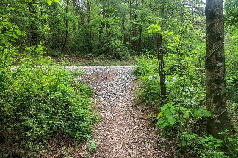 Boyd Branch Trailhead @ F.R. 479 -- 2,260'