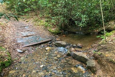 Boyd Branch Trail -- 2,340'