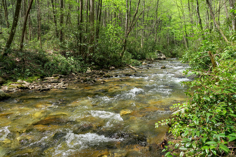 Bradley Creek @ Ford #5 (SB)/#10 (NB) -- 2,510'