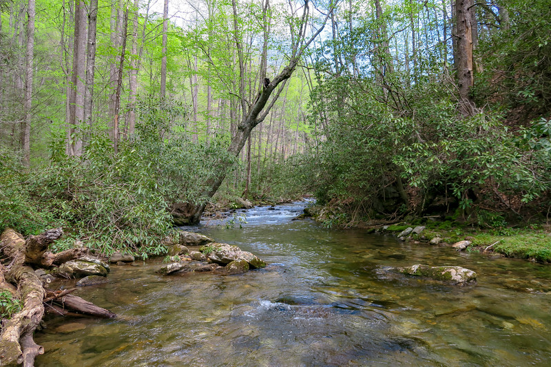 Bradley Creek @ Ford #2 (SB)/#13 (NB) -- 2,590'