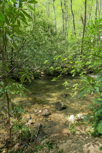 Bradley Creek Trail @ Ford #4 (SB)/#11 (NB) -- 2,540'