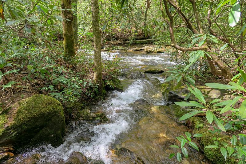 Yellow Gap Creek -- 2,660'