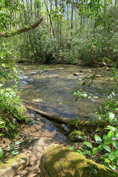 Bradley Creek Trail @ Ford #7 (SB)/#8 (NB) -- 2,480'
