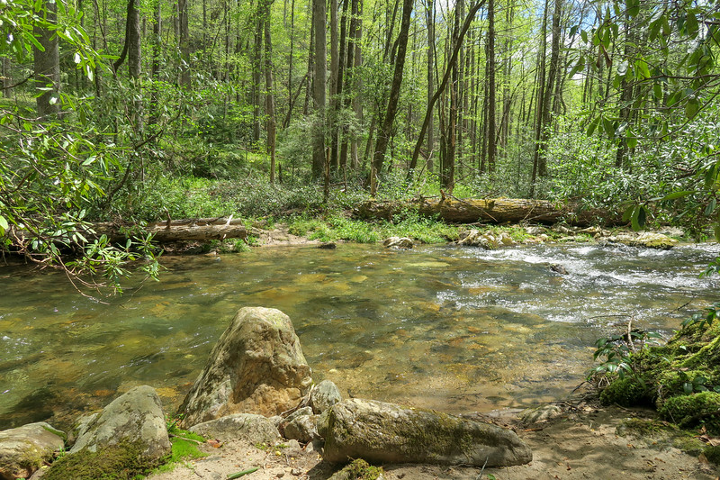 Bradley Creek Trail @ Ford #6 (SB)/#9 (NB) -- 2,500'