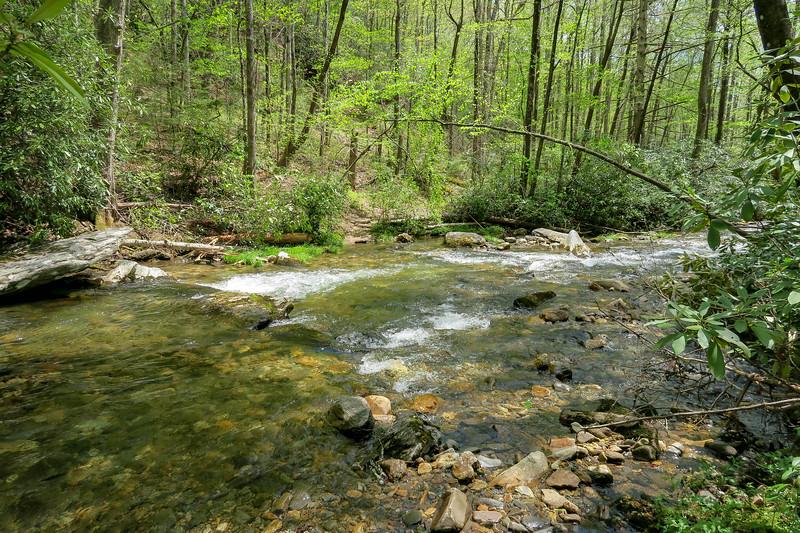 Bradley Creek Trail @ Ford #8 (SB)/#7 (NB) -- 2,470'