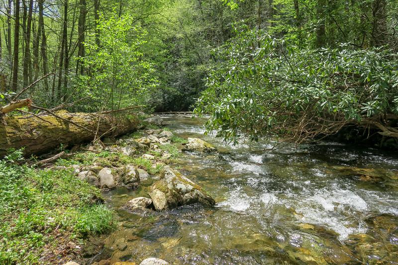 Bradley Creek @ Ford #6 (SB)/#9 (NB) -- 2,500'