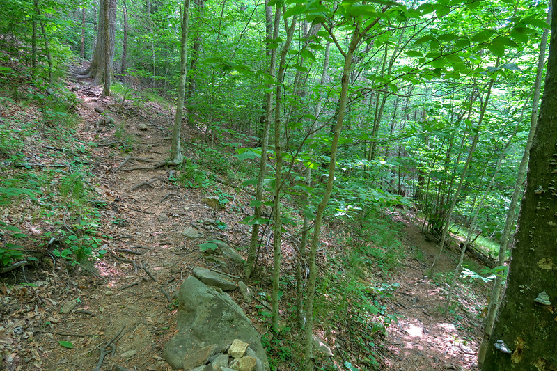 Bridges Camp Gap Trail -- 4,300'