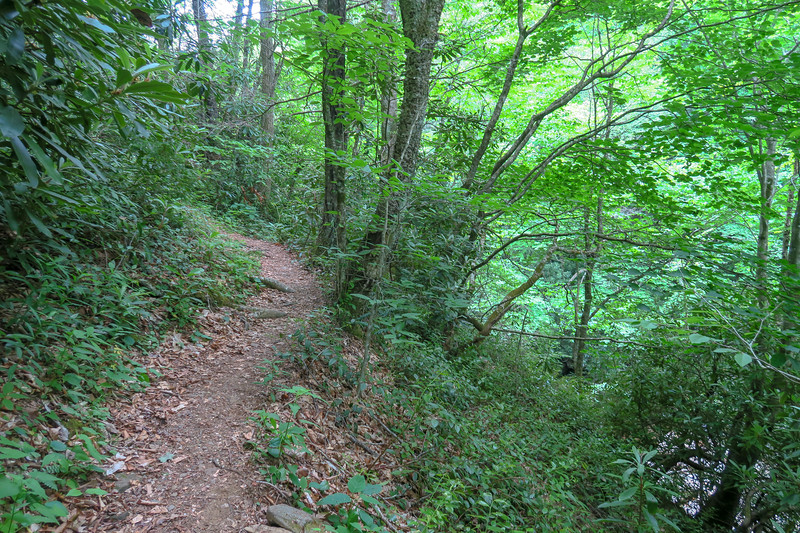 Bridges Camp Gap Trail -- 4,040'