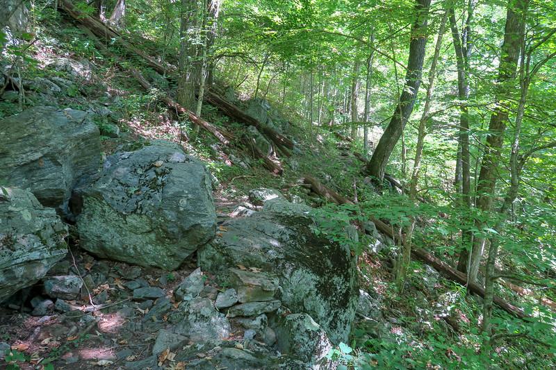 Buck Spring/Mountains-to-Sea Trail -- 4,170'