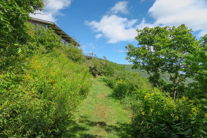 Buck Spring/Mountains-to-Sea Trail @ Pisgah Inn -- 4,940'