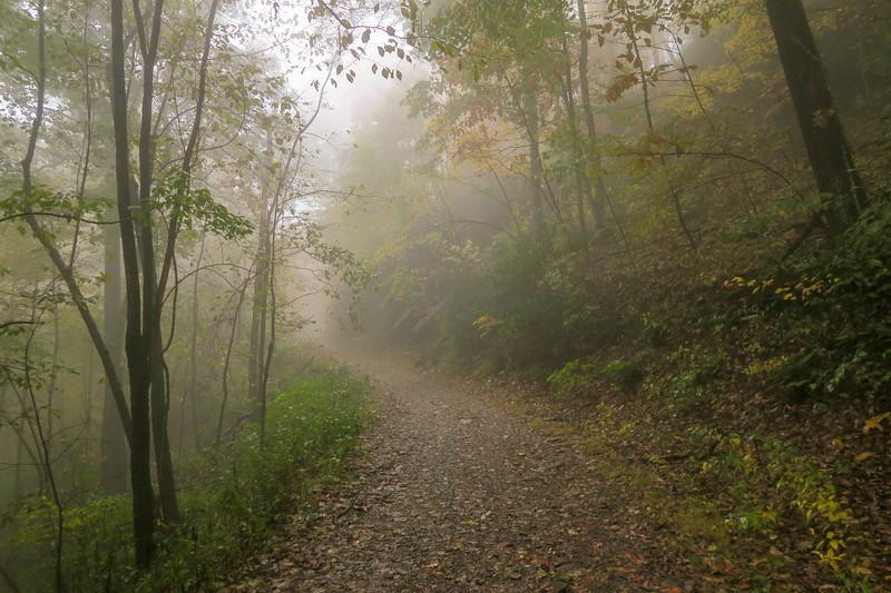 Buckhorn Gap Trail (F.R. 5058) -- 3,280'