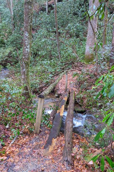 Buckhorn Gap Trail -- 2,690'