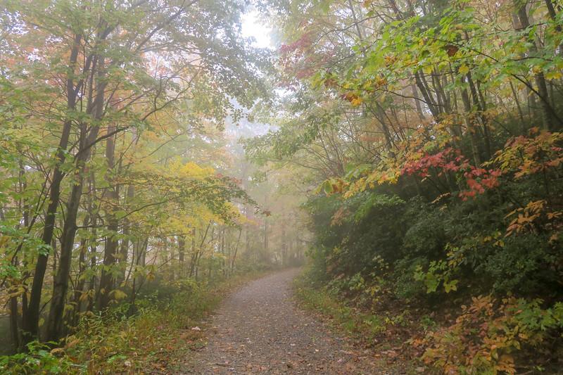 Buckhorn Gap Trail (F.R. 5058) -- 3,220'