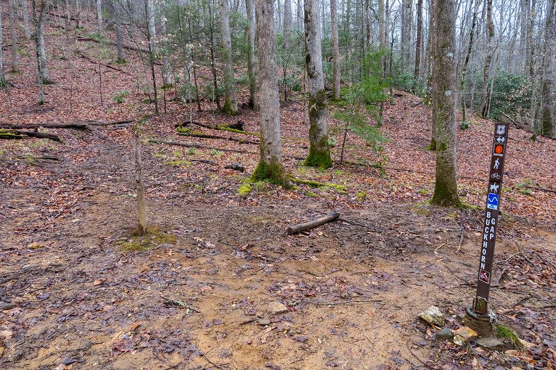 Buckhorn Gap/Twin Falls Trail Upper Junction -- 2,740'
