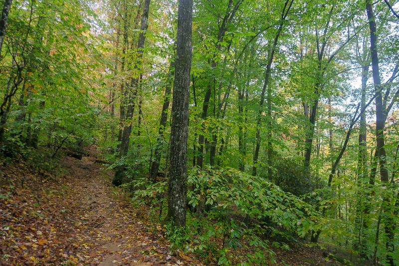 Buckhorn Gap Trail -- 2,750'