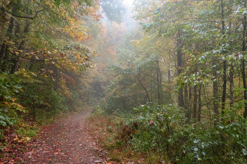 Buckhorn Gap Trail (F.R. 5058) -- 3,170'