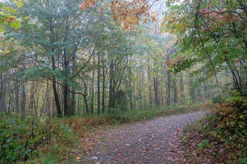 Buckhorn Gap Trail (F.R. 5058) -- 3,180'