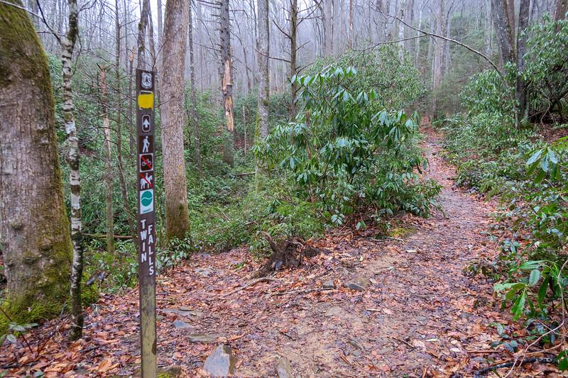 Buckhorn Gap/Twin Falls Trail Lower Junction -- 2,700'