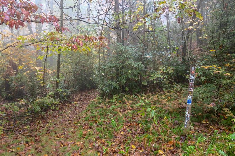 Buckhorn Gap Trail/F.R. 5058 Upper Junction -- 3,320'