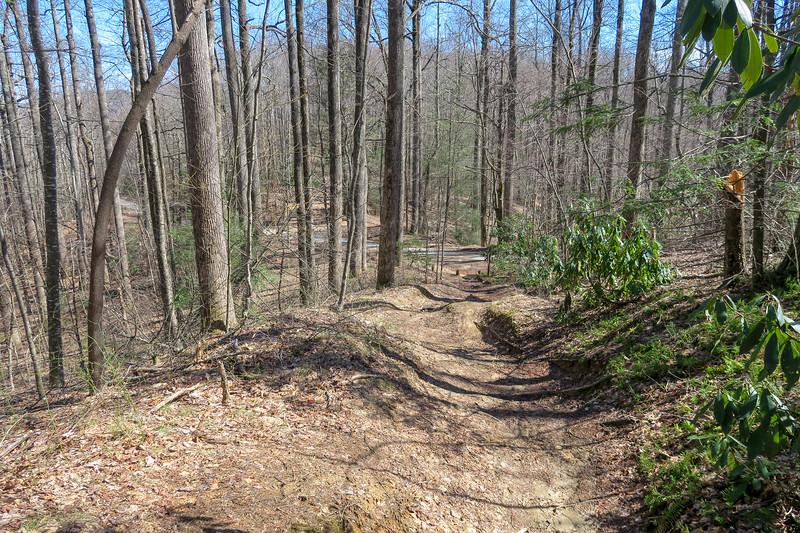 Buckwheat Knob Trail @ Bennett Gap -- 3,530'