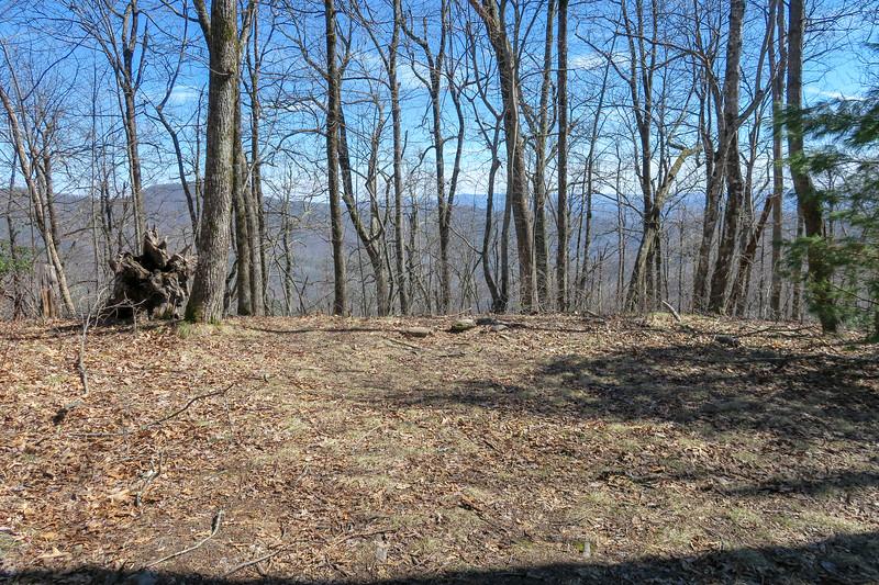 Buckwheat Knob Trail -- 3,950'