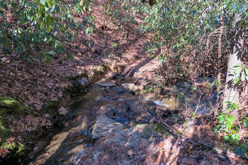 Butter Gap Trail -- 3,150'