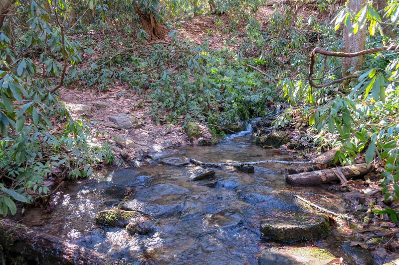 Butter Gap Trail -- 2,950'