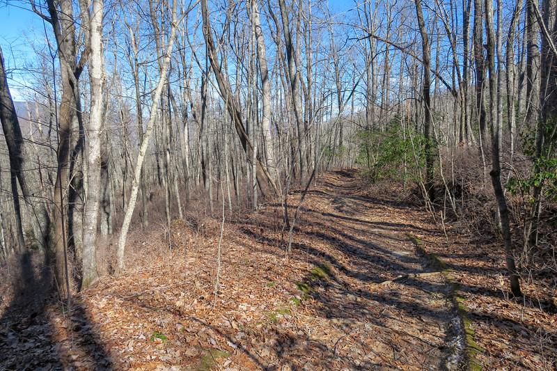 Butter Gap Trail -- 3,300'