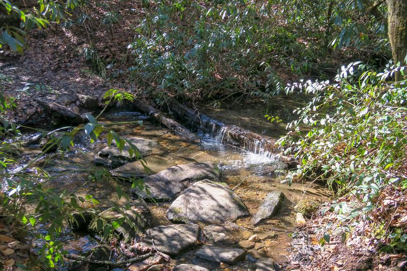 Butter Gap Trail -- 2,840'