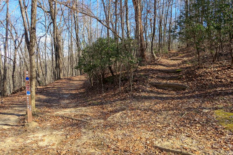 Butter Gap/Art Loeb Trail West Junction -- 3,320'