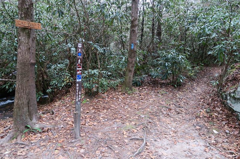 Butter Gap/Cat Gap Loop Trail Junction -- 2,590'