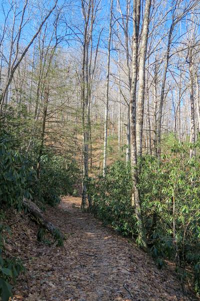Butter Gap Trail -- 2,700'