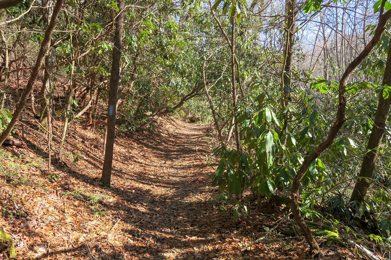 Butter Gap Trail -- 2,780'