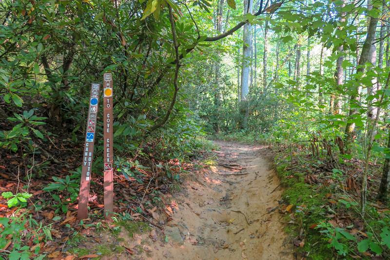 Caney Bottom Trailhead @ Cove Creek Group Camp -- 2,650'