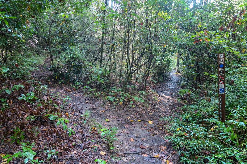 Caney Bottom Trail -- 2,710'