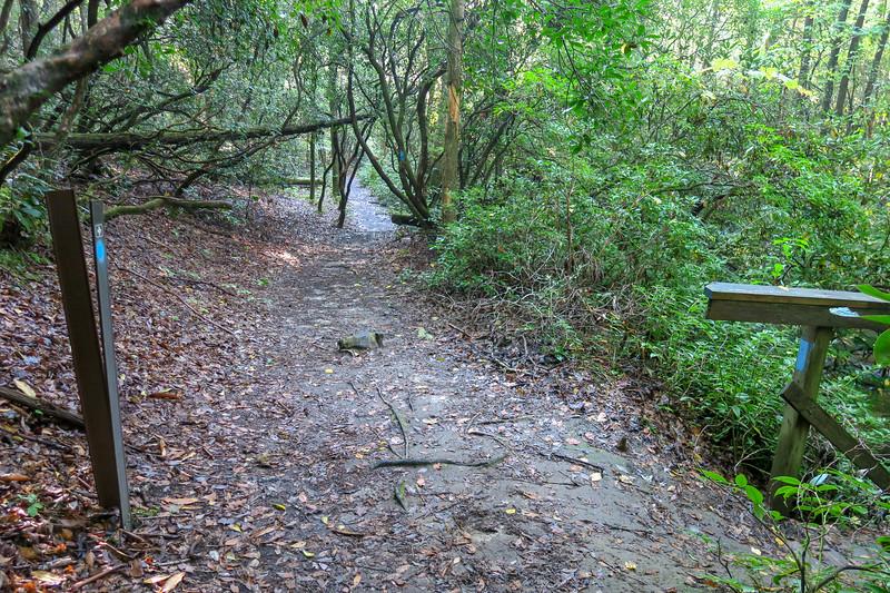 Caney Bottom Trail -- 2,700'