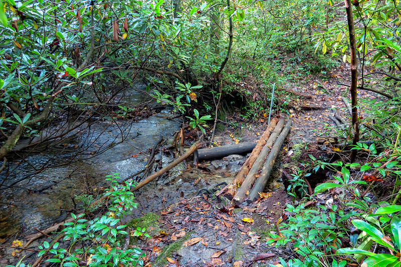 Caney Bottom Trail -- 2,880'