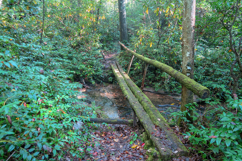 Caney Bottom Trail -- 2,960'