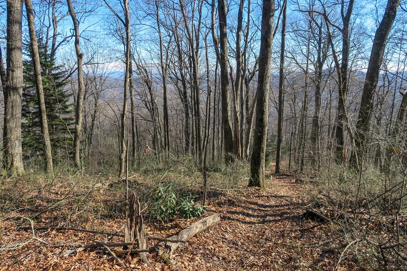 Case Camp Ridge Trail -- 3,850'