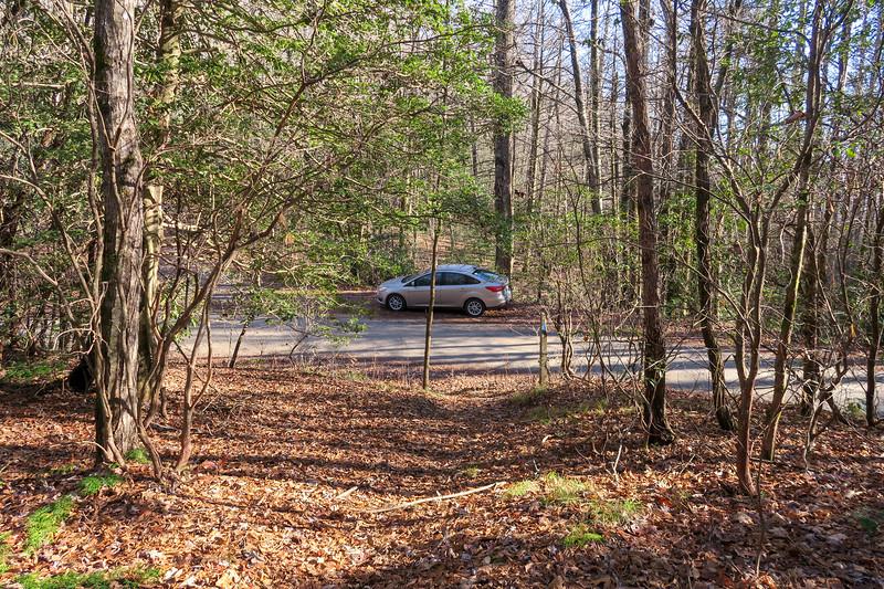Case Camp Ridge Trail @ Case Ridge Gap -- 3,360'