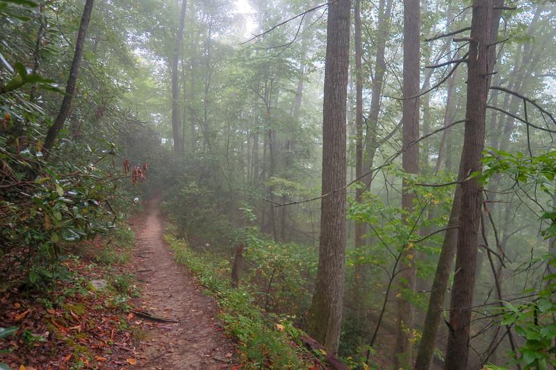 Cat Gap Loop Trail -- 2,950'