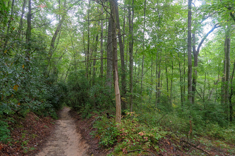 Cat Gap Loop Trail -- 2,530'