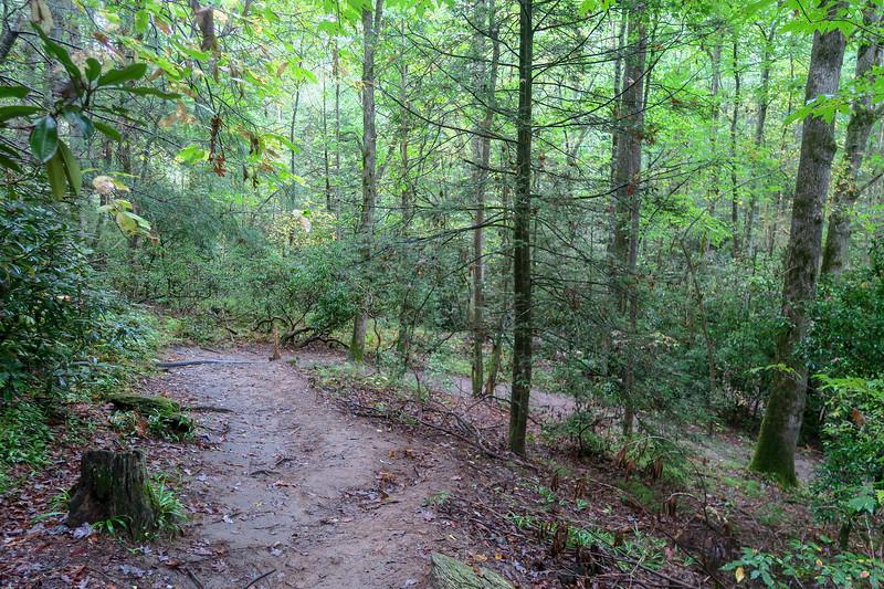 Cat Gap Loop Trail -- 2,390'