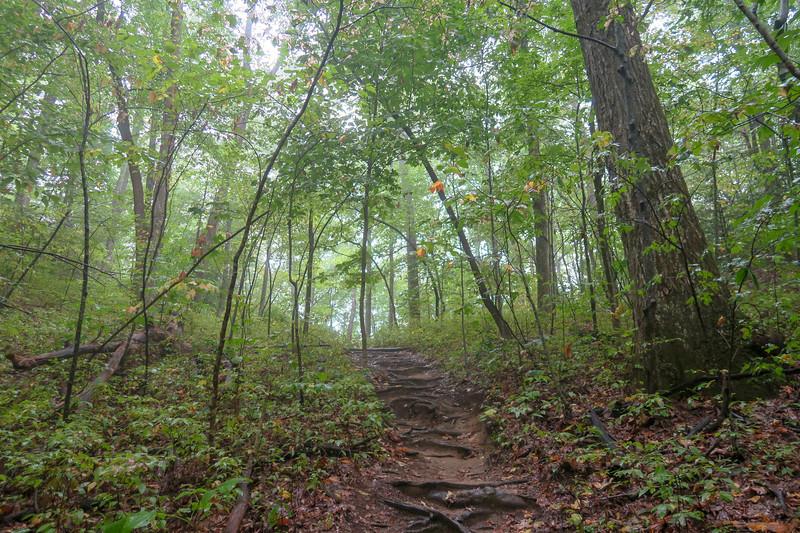 Cat Gap Loop Trail -- 3,070'