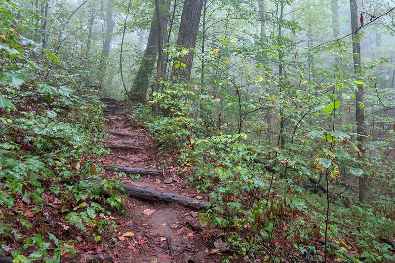 Cat Gap Loop Trail -- 3,000'