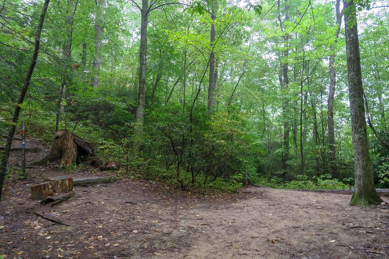 Cat Gap Loop/Cat Gap Bypass/John Rock Trail Upper Junction -- 3,100'