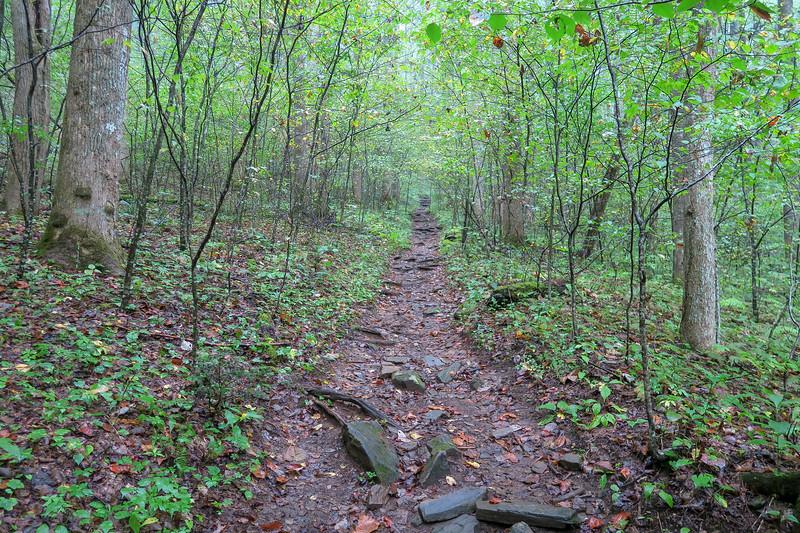 Cat Gap Loop Trail -- 2,850'